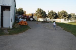 Milo, chasing down his cat, Tang.